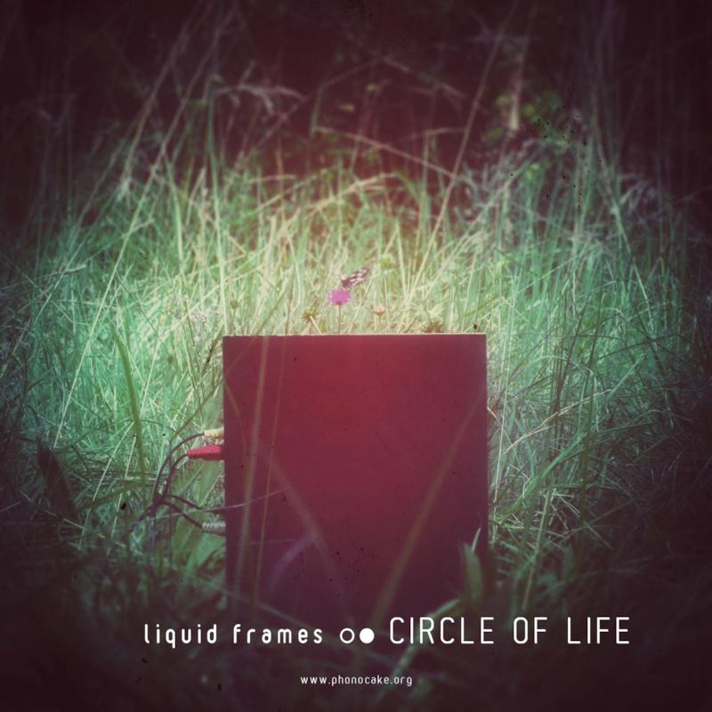 phokes111-_-__-_-Liquid_Frames-_-artwork-_-800